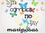2015.10.15_mariposas
