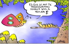 mariposa-last
