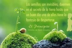 FB_IMG_1444420002010